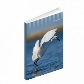 Premium Small Notebook Soft Cover 5